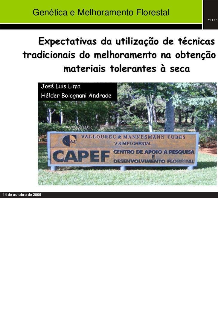 Genética e Melhoramento Florestal             Expectativas da utilização de técnicas          tradicionais do melhoramento...