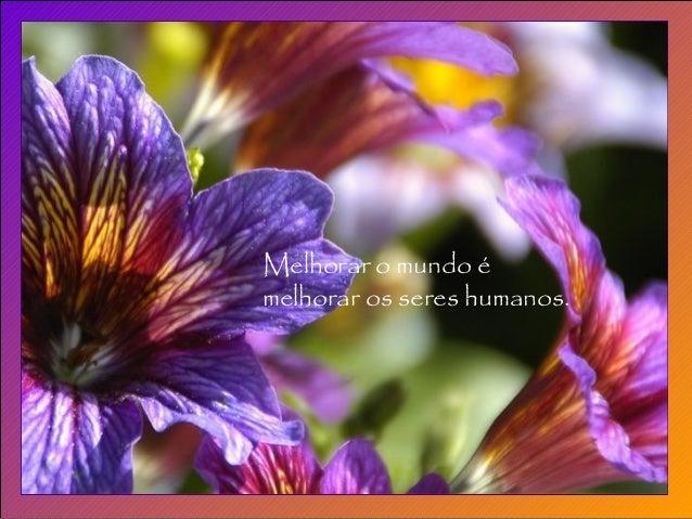Melhorar o mundo é melhorar os seres humanos.