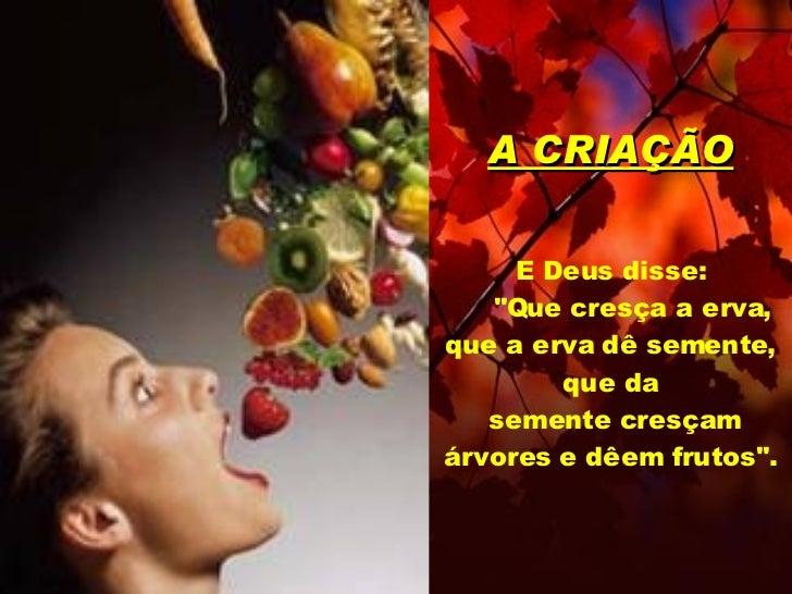 """A CRIAÇÃO E Deus disse:   """"Que cresça a erva, que a erva dê semente, que da  semente cresçam árvores e dêem frutos&qu..."""
