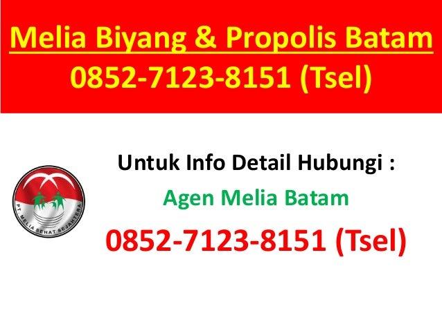 Melia Biyang & Propolis Batam 0852-7123-8151 (Tsel) Untuk Info Detail Hubungi : Agen Melia Batam 0852-7123-8151 (Tsel)