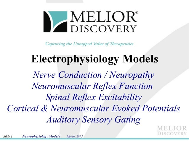 Electrophysiology Models        Nerve Conduction / Neuropathy        Neuromuscular Reflex Function            Spinal Refle...