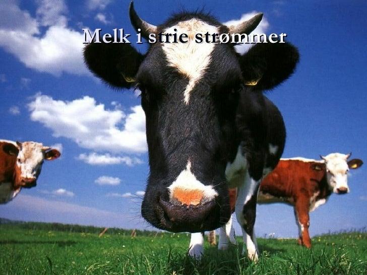 Melk i s trie str ømmer