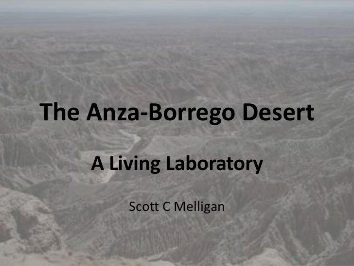 The Anza-Borrego Desert    A Living Laboratory        Scott C Melligan
