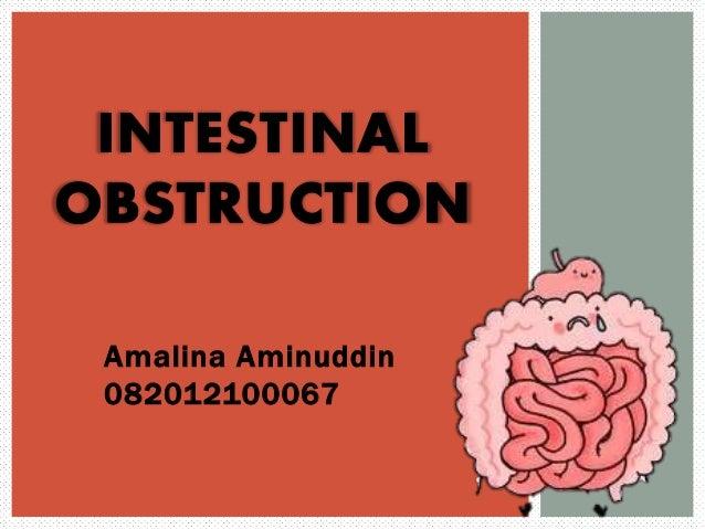 Amalina Aminuddin 082012100067