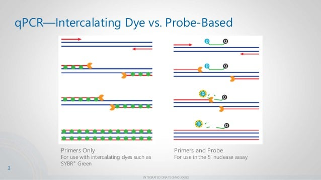 Understanding Melt Curves For Improved Sybr 174 Green Assay