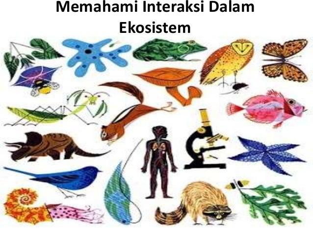 Memahami Interaksi Dalam  Ekosistem