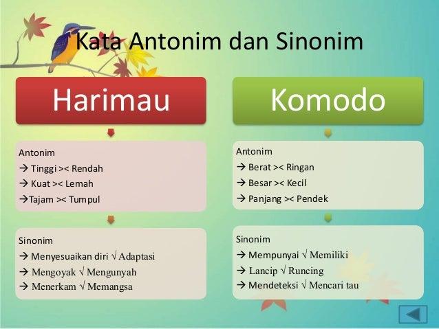 Inilah Perbedaan Antonim Dan Sinonim