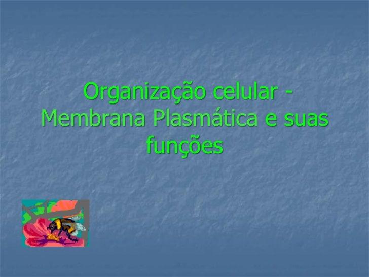 Organização celular -Membrana Plasmática e suas        funções