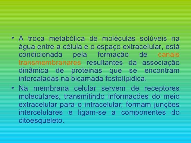 <ul><li>A troca metabólica de moléculas solúveis na água entre a célula e o espaço extracelular, está condicionada pela fo...