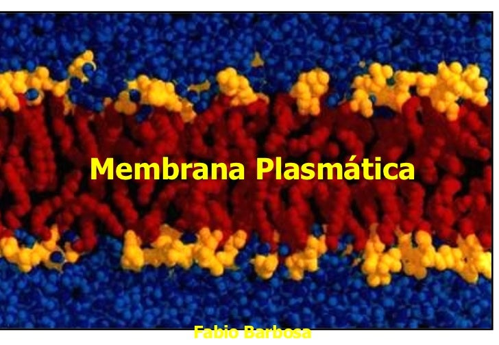 Membrana Plasmática Fabio Barbosa