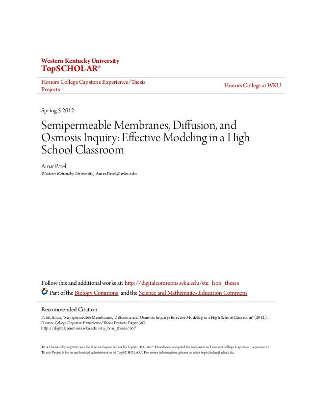 wku thesis guidelines