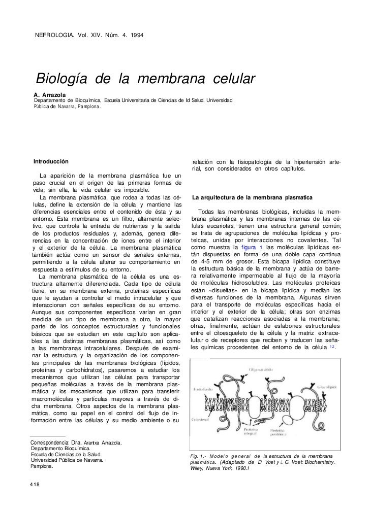 NEFROLOGIA. Vol. XIV. Núm. 4. 1994  Biología de la membrana celular A. Arrazola Departamento de Bioquímica, Escuela Univer...