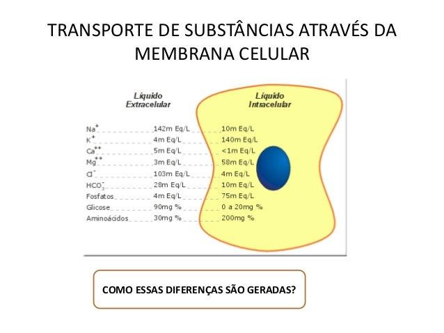 TRANSPORTE DE SUBSTÂNCIAS ATRAVÉS DA  MEMBRANA CELULAR  COMO ESSAS DIFERENÇAS SÃO GERADAS?