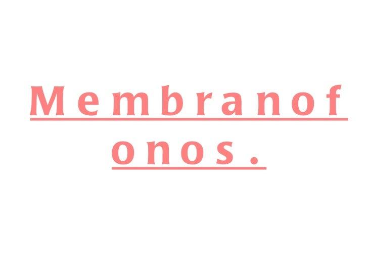 Membranofonos.