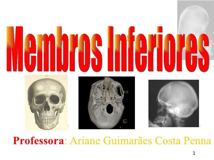 <ul><ul><li>Professora : Ariane Guimarães Costa Penna </li></ul></ul>Membros Inferiores 1 3 2
