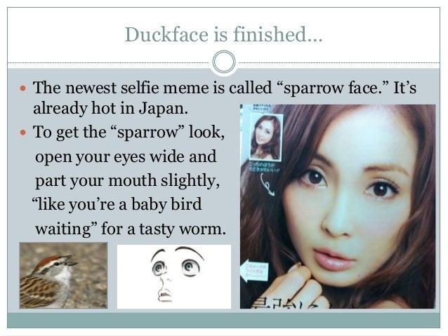Image result for sparrow face selfie