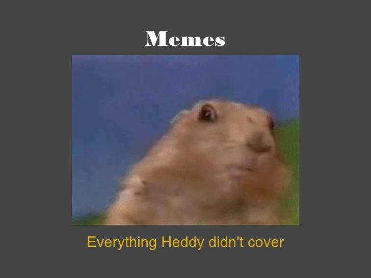 Memes Everything Heddy didn't cover