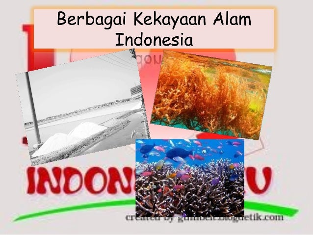 Memiliki kebanggaan sebagai bangsa indonesia