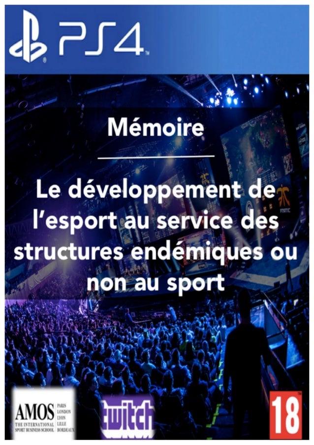 Mémoire de recherche Master 2 Demaret Sébastien