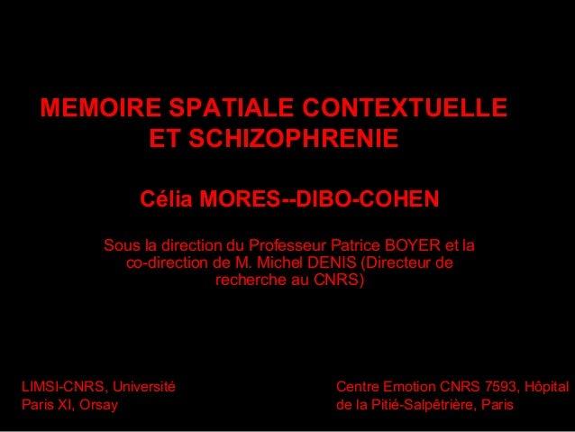 Memoire spatiale contextuelle et schizophrenie these mores dibo-cohen 2006 thesev2