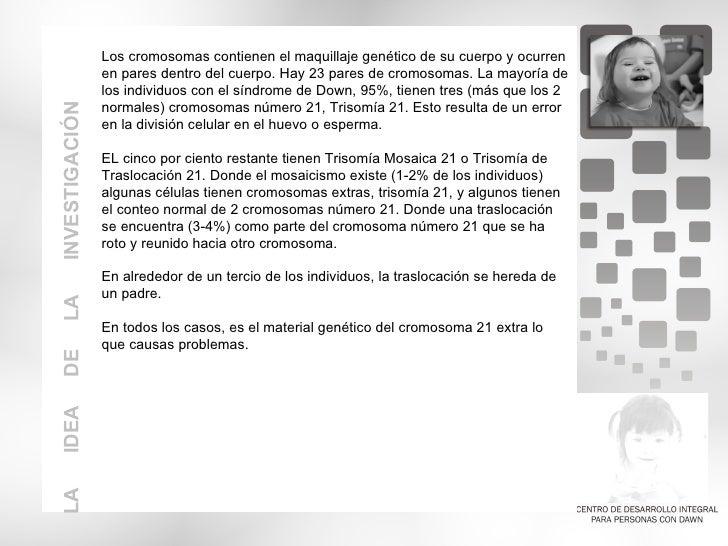 CENTRO DE DESASRROLLO INTEGRAL PARA PERSONAS CON DOWN
