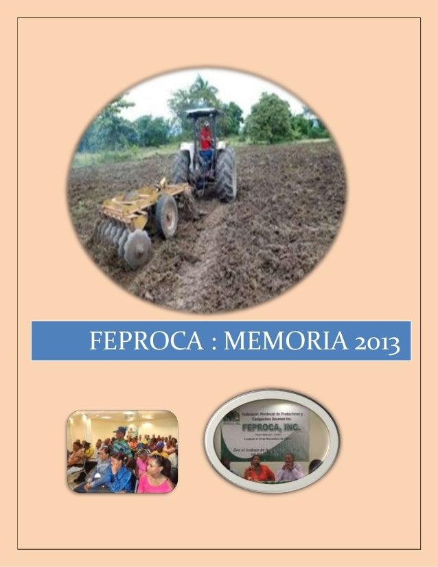 FEPROCA : MEMORIA 2013