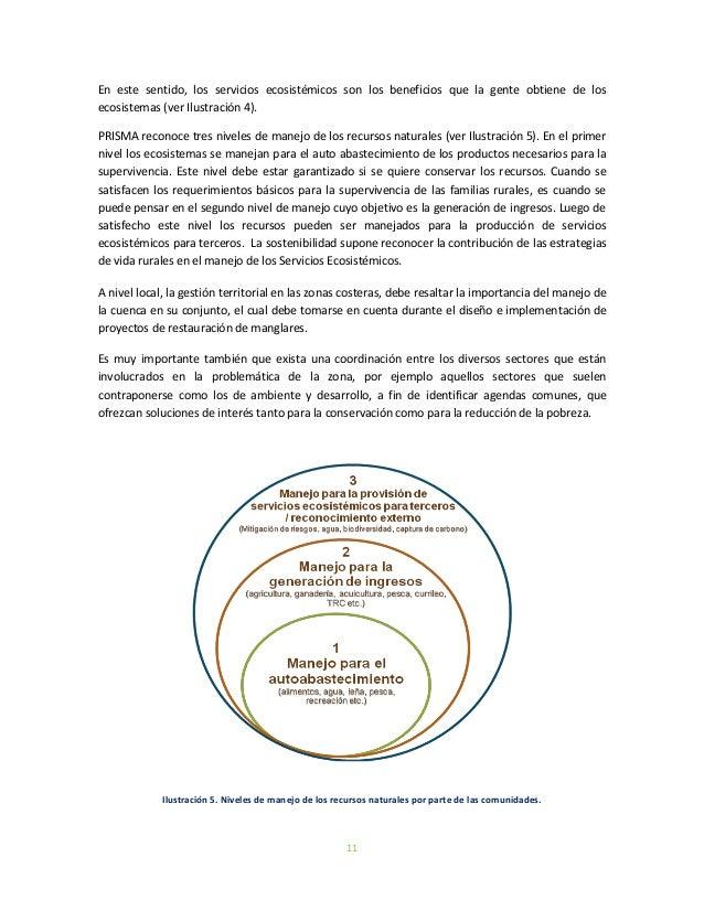 11En este sentido, los servicios ecosistémicos son los beneficios que la gente obtiene de losecosistemas (ver Ilustración ...