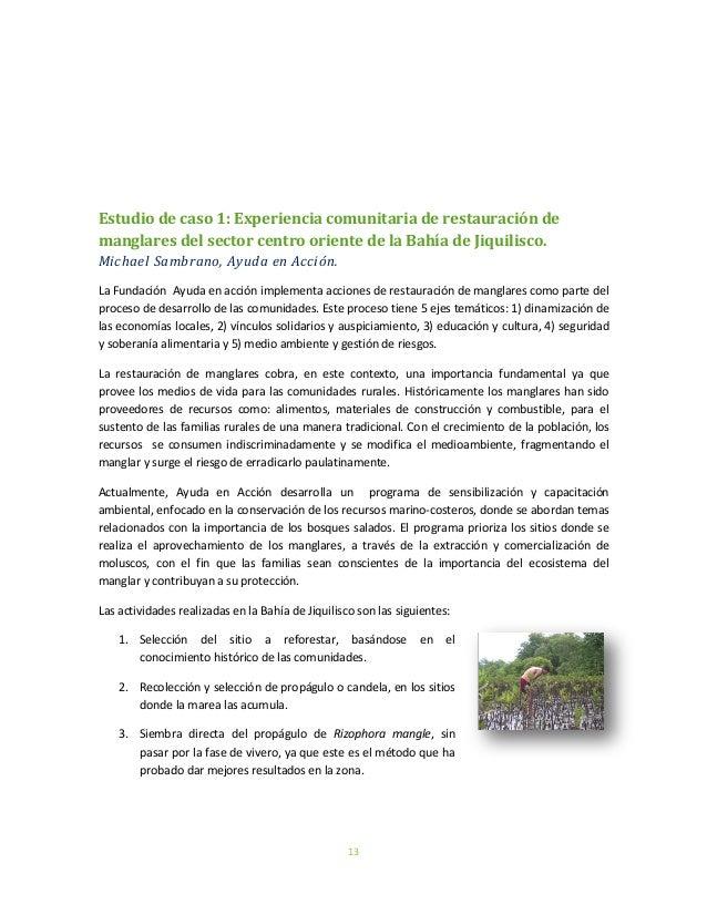 13Estudio de caso 1: Experiencia comunitaria de restauración demanglares del sector centro oriente de la Bahía de Jiquilis...