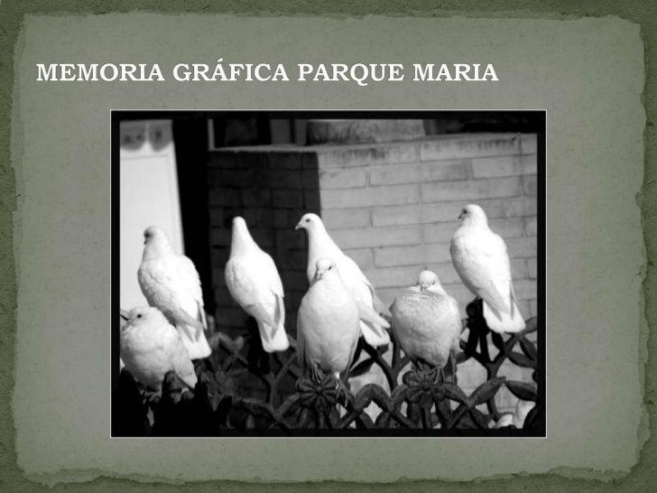 MEMORIA GRÁFICA PARQUE MARIA <br />