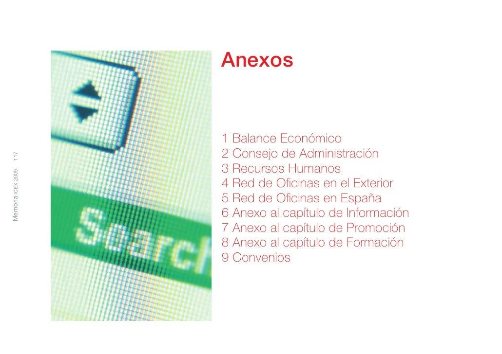 Memoria de Actividades ICEX 2009