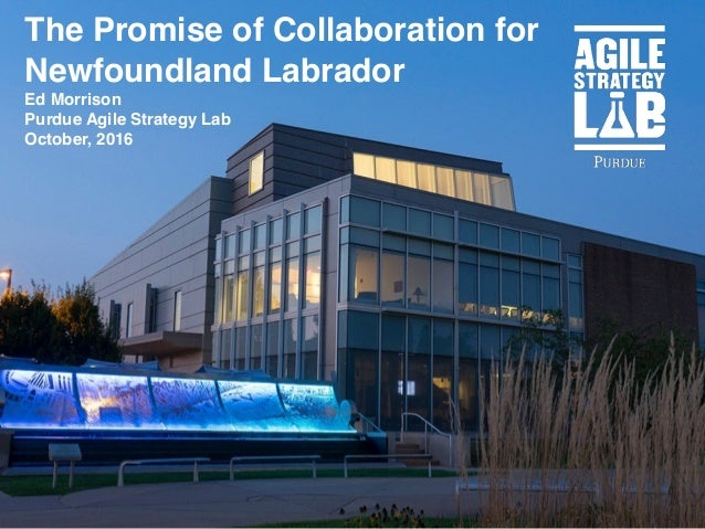 The Promise of Collaboration for Newfoundland Labrador Ed Morrison Purdue Agile Strategy Lab October, 2016