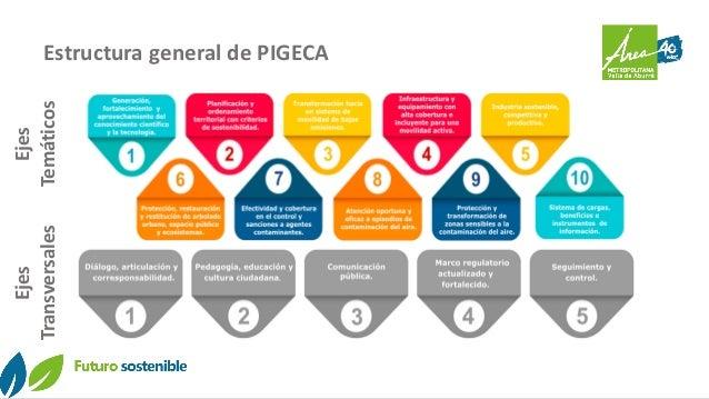 Estructura general de PIGECA Ejes Temáticos Ejes Transversales