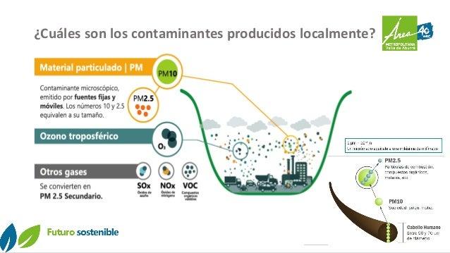 ¿Cuáles son los contaminantes producidos localmente?