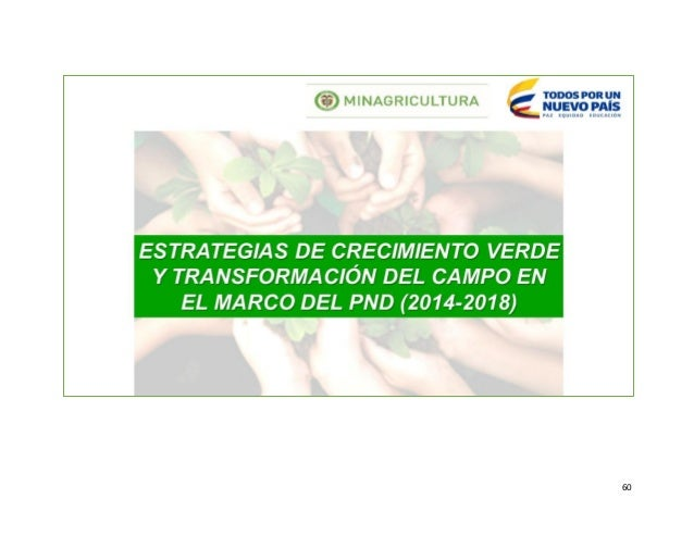 MEMORIAS PRIMER SEMINARIO REGIONAL DE LA CADENA FORESTAL