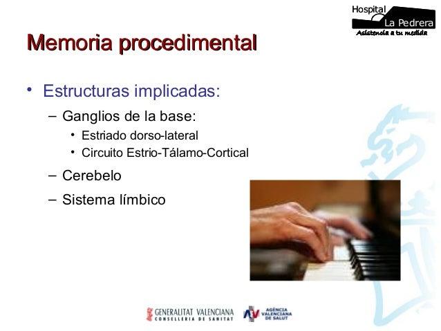 Circuito La Pedrera : Memoria y sindromes amnesicos