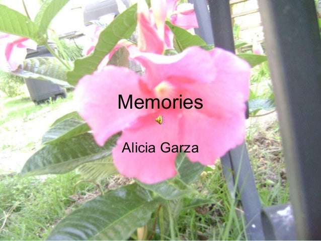 Memories Alicia Garza