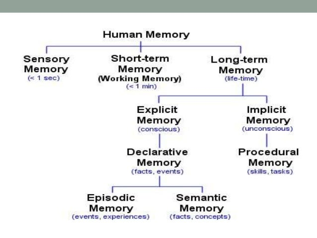 memory storage of psychological present and past events Memory is the faculty of the mind by which information is encoded, stored, and  retrieved memory is vital to experiences and related to limbic systems, it is the  retention of information over time for the purpose of influencing future action if we  could not remember past events, we could not learn or develop  much of the  current knowledge of memory has come from studying memory.