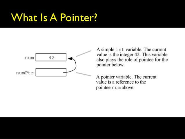The Function Pointer Tutorials
