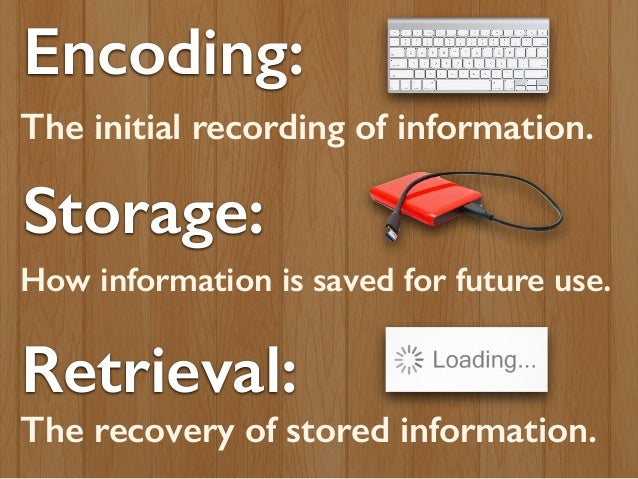 the process of encoding storing and retrieving information from our memory Psychologists refer to storing memories as an encoding process--a procedure for transforming something a person sees hears is a process of encoding that is part of our working or retrieve them back into memory the encoding specificity principle.