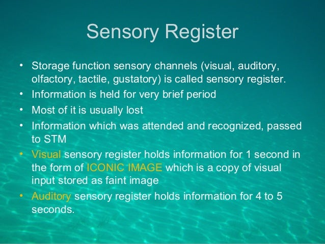Sensory Memory: Definition, Examples & Types - Video ... |Sensory Memory Examples Psychology