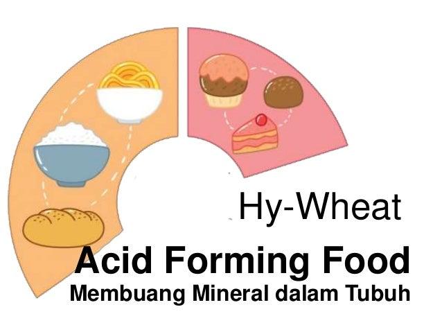 Acid Forming Food Membuang Mineral dalam Tubuh Hy-Wheat