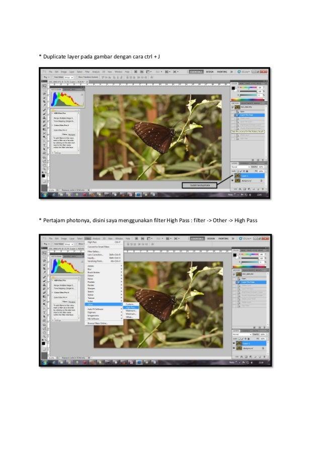 Mempertajam dan merubah tone pada photo macro Slide 2