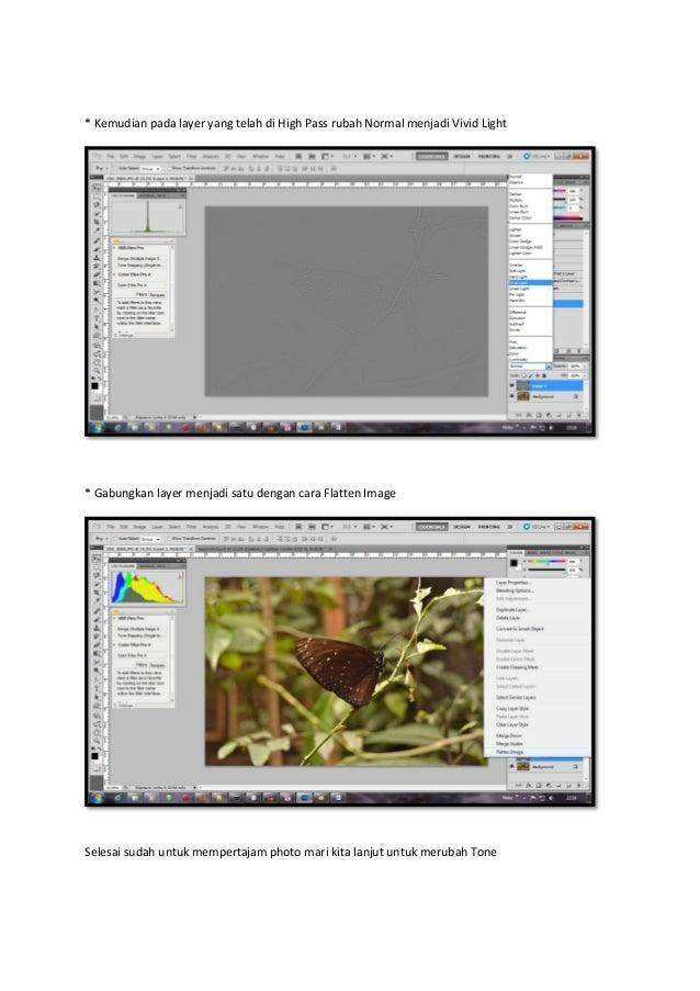 Mempertajam dan merubah tone pada photo macro Slide 3
