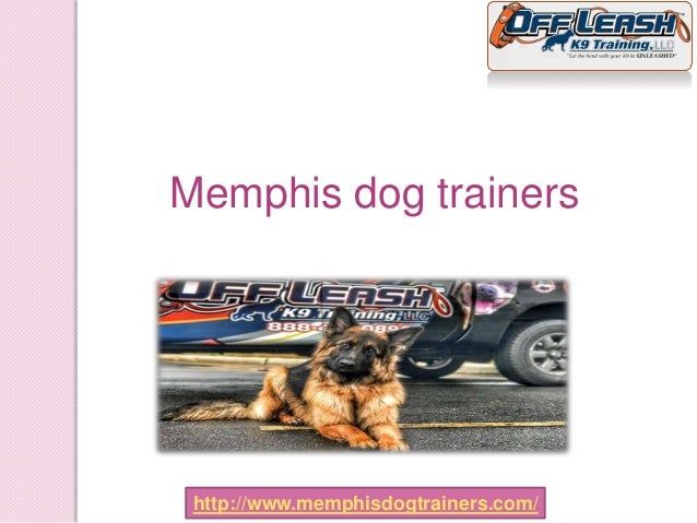 Memphis dog trainers http://www.memphisdogtrainers.com/