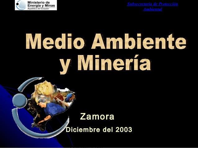Subsecretaria de Protección Ambiental Zamora Diciembre del 2003