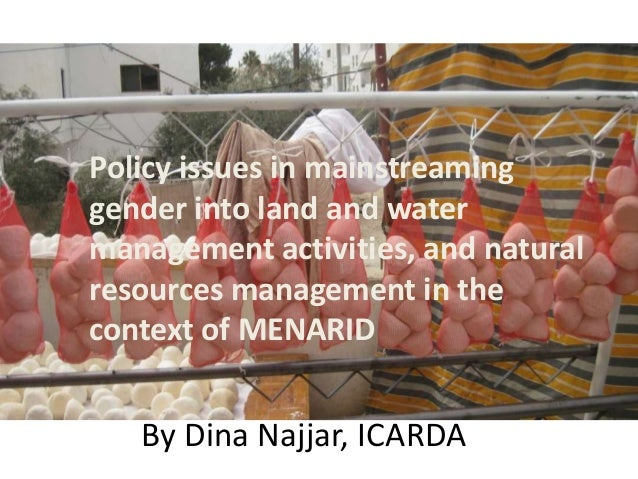 Policy issues in mainstreaming gender into land and water management activities, and natural resources management in the c...