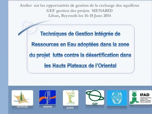 Atelier sur les opportunités de gestion de la recharge des aquifères GEF gestion des projets MENARID Liban, Beyrouth les 1...