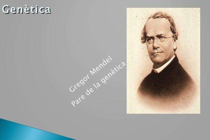 Genètica Gregor Mendel Pare de la genètica