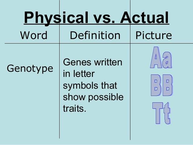 genotype definition - photo #4