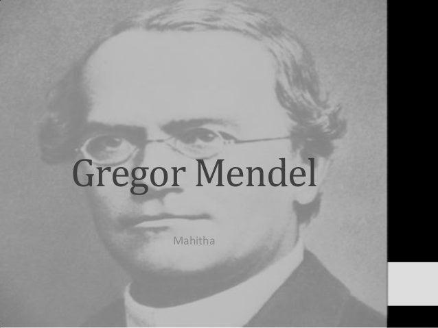 Gregor Mendel Mahitha